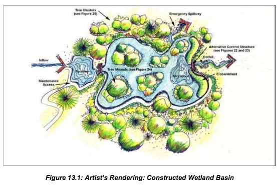 Constructed Wetland Basin Sketch