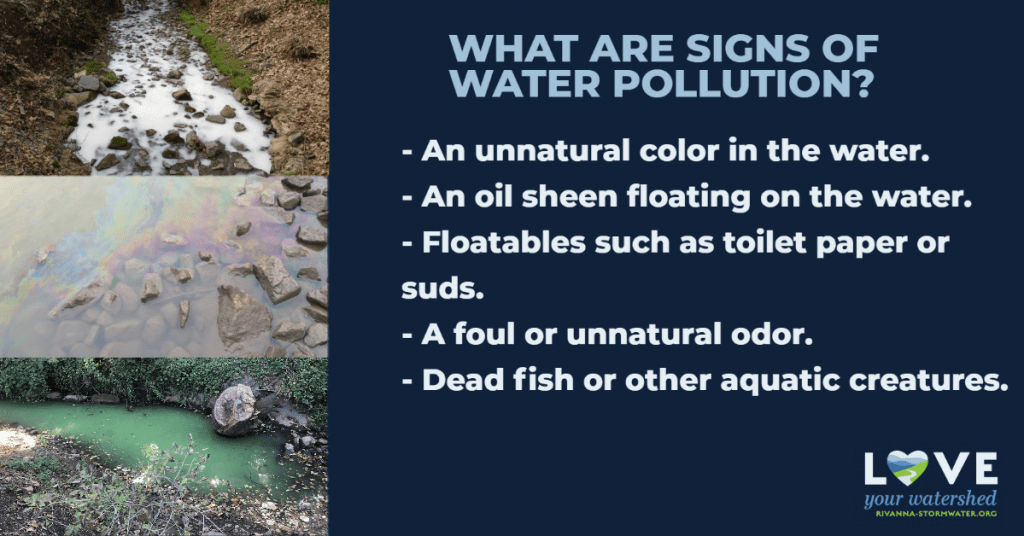 What are signs of water pollution